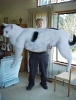 The World's Biggest Cat_1